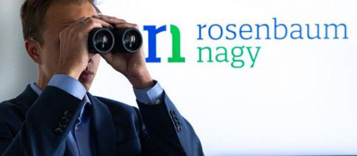 Krisenmanagement rosenbaum nagy